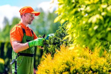 entretien jardin agriteam