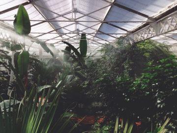 environnement ecologie agriteam