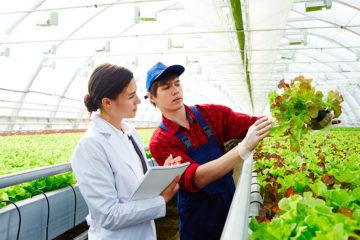 métier dans agriculture