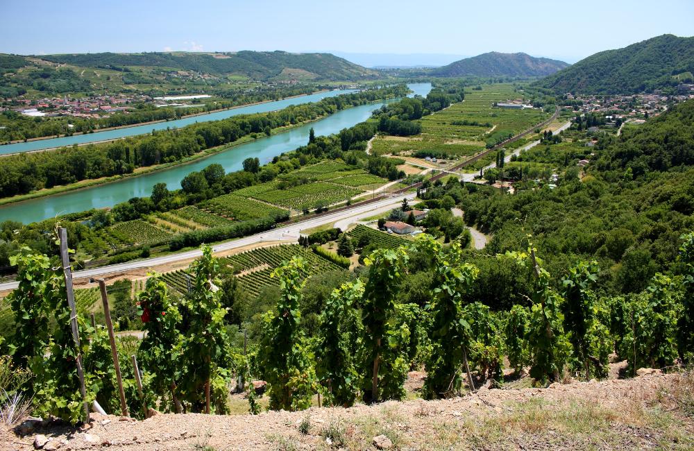 AGRITEAM : Développement dans le Grand Est Provence